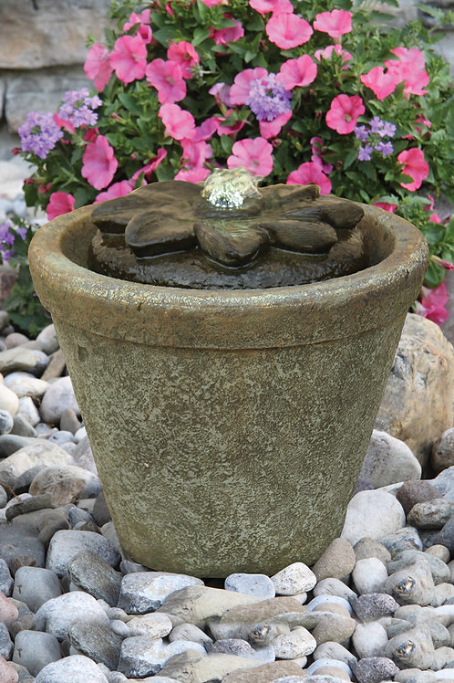 Fountainette - Flower