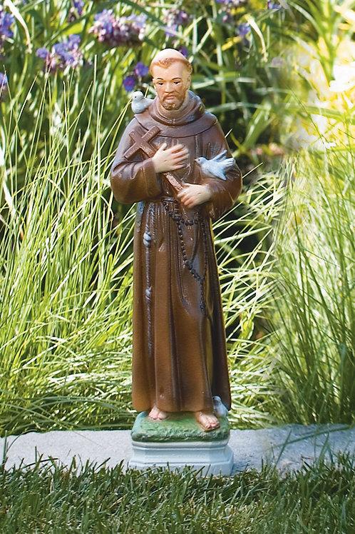 "17"" St. Francis"