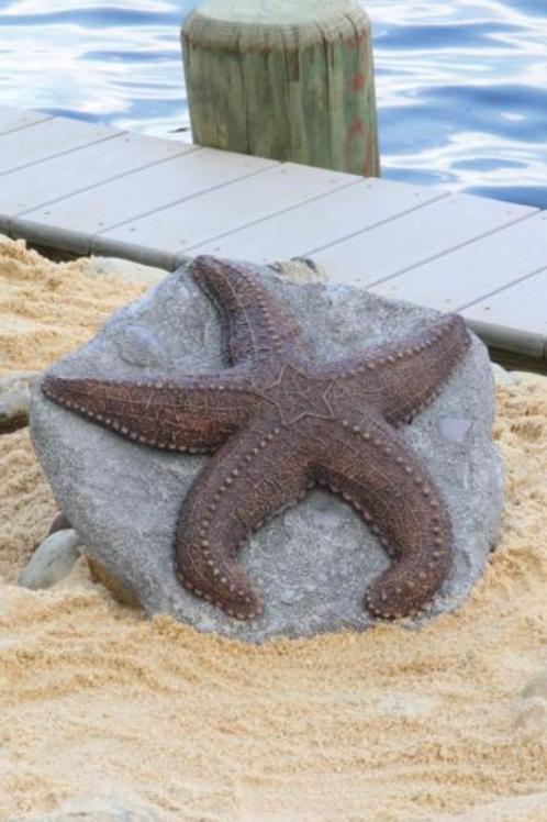 Deep Sea Starfish