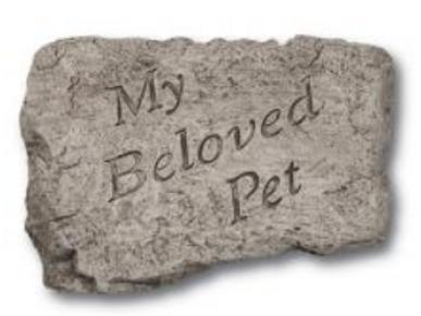 "10"" stone- my beloved pet"