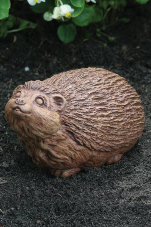 "8"" Hedgehog"