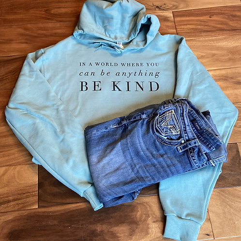 In a world where you can be anything BE KIND!
