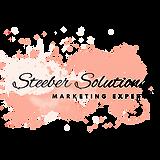 Steeber Solutions Logo (1).png