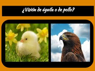 ¿Visión de Águila o de Pollo?