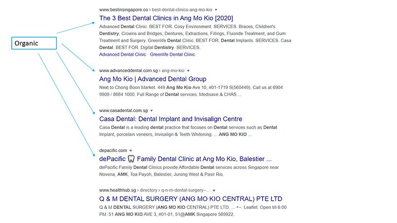 Google Serach Result Page Organic Listin