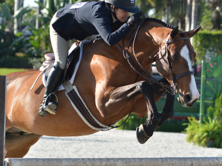 Pony Lane Completes Another Successful Season at the 2021 Winter Equestrian Festival