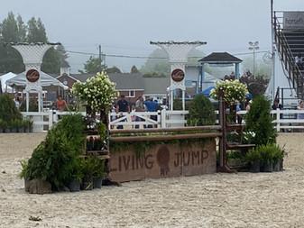 Brandywine Horse Shows