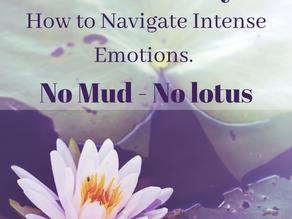 Self Mastery -  How to Navigate Intense Emotions - No Mud - No Lotus
