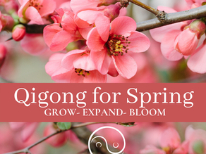 Qigong for Spring- Grow, Expand & Bloom!