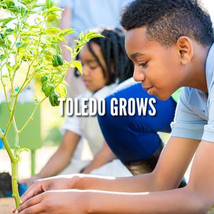 Toledo GROWs