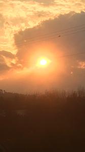 עמרי וולף - עין השמש