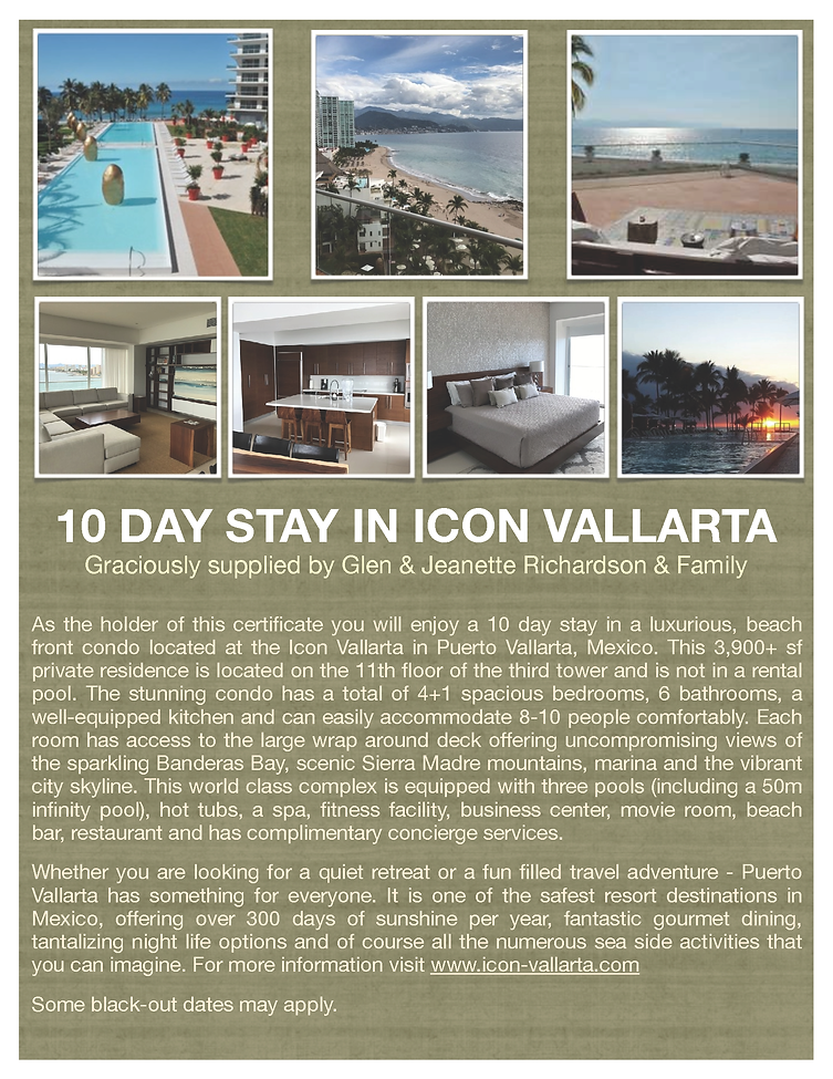 Richardson Icon- Puerto Vallarta.png