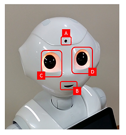 Pepper Tutorial 7: Image recognition