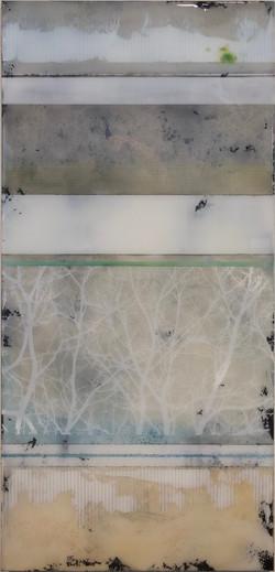 Forest 1 by Ken Sloan