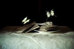 Butterflies and Japanese Paper