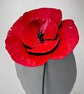 Poppy Flower.jpg