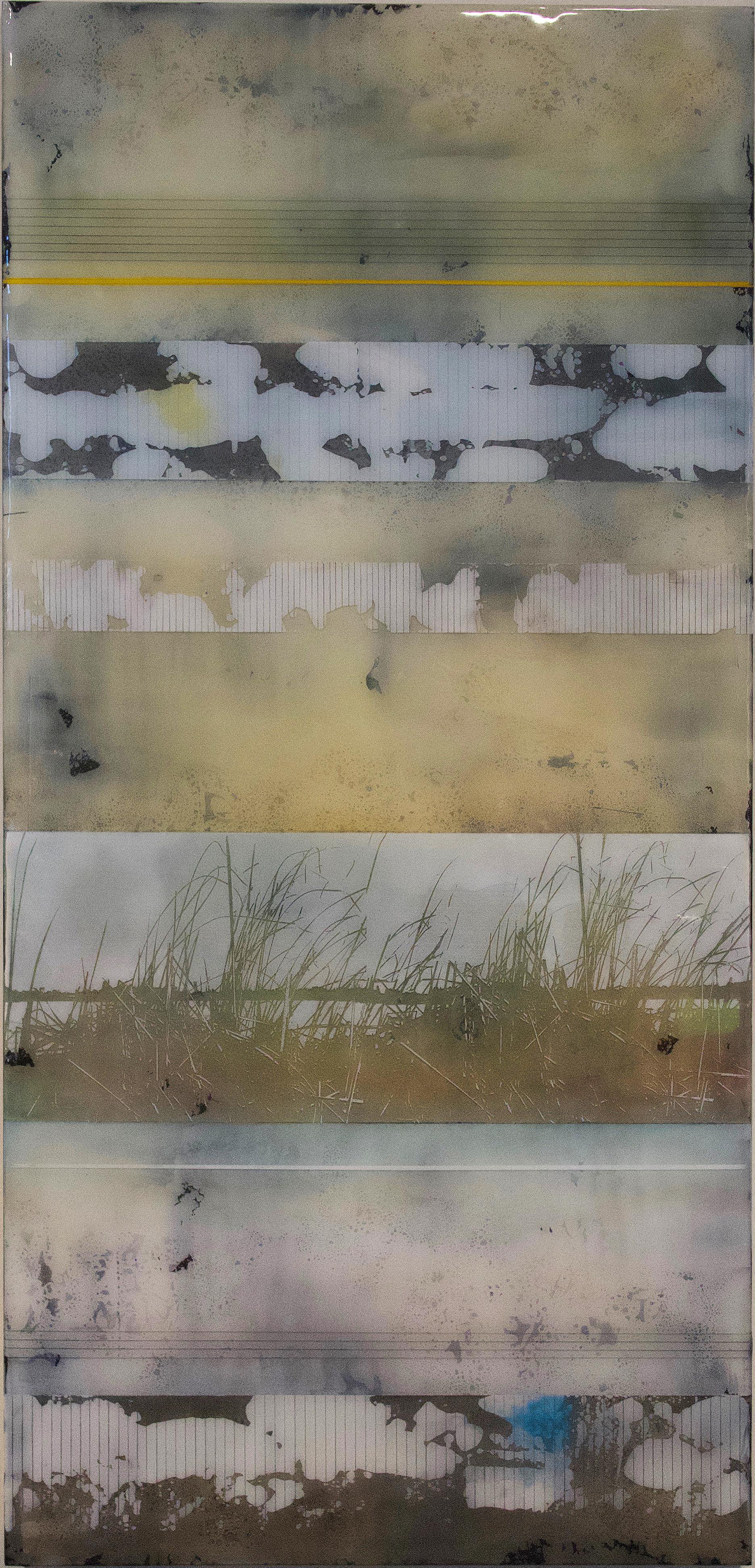 Sea Grass 1