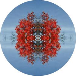 Portals, Snowflakes and Chandel