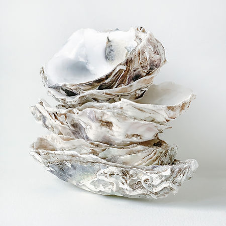 Achille Oysters 535