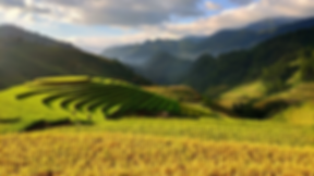 agriculture-3732476_960_720.webp