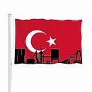 DSL UNITY TURKEY.png