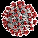 coronavirus-covid-19.png