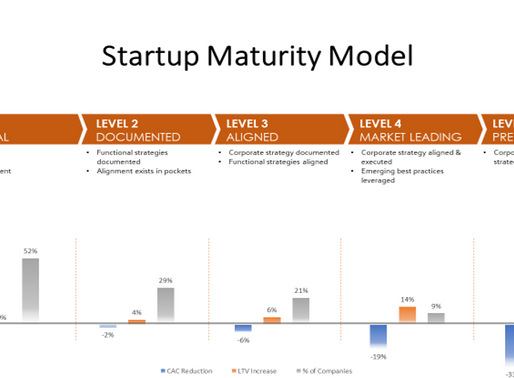 The BOSS Startup Maturity Model®