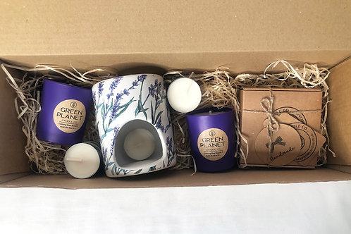 Lavandin Botanical Purple Votive/Melt Set
