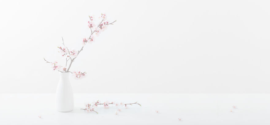 flowering%20pink%20cherry%20branch%20in%