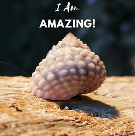 I am amazing.jpg