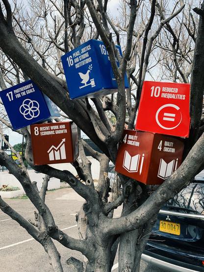 UNDP Meetup - SDG Tree.jpeg