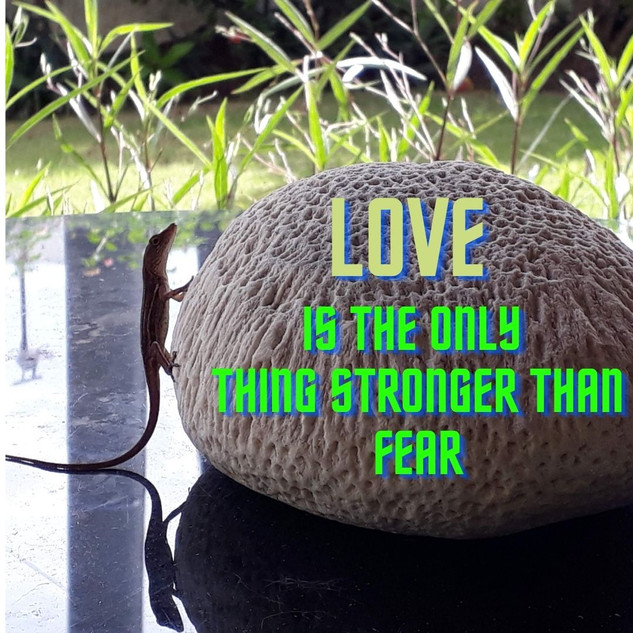 Love above fear.jpg