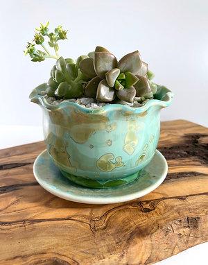 Living Succulent Planter - Copper Green Crystalline