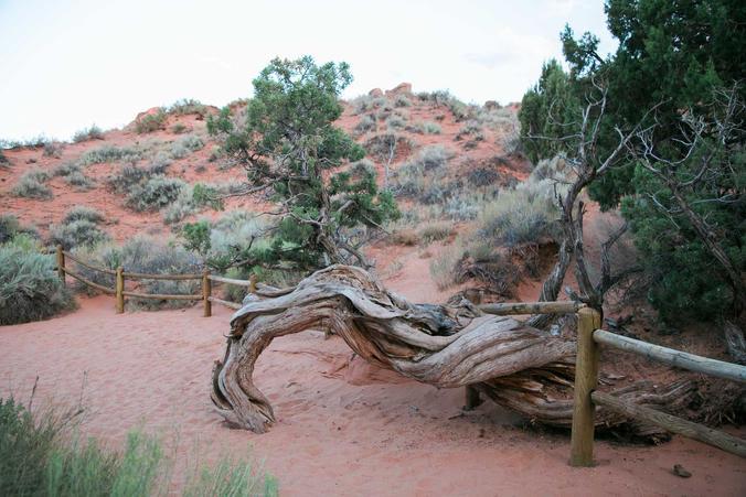 fletkefoto landscape photojournalism photography