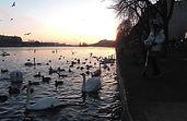 Copenhagen søerne