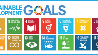 Delivering the Sustainable Development Goals - What comes first?