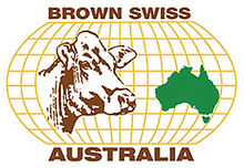 brown-swiss-logo-colour.jpg