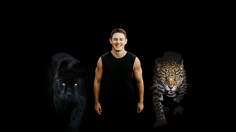 Sean Jaguar Panther.png