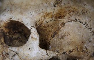 Итальянские ученые нашли возможные останки Моны Лизы