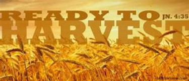 """""""PRAY FOR THE LABORERS OF THE HARVEST"""""""
