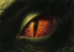 dragons eye.jpg