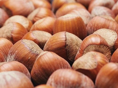 Corylus Avellana, Hazel Nut