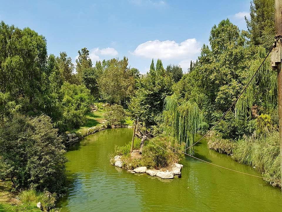 האי באגם של גן החיות