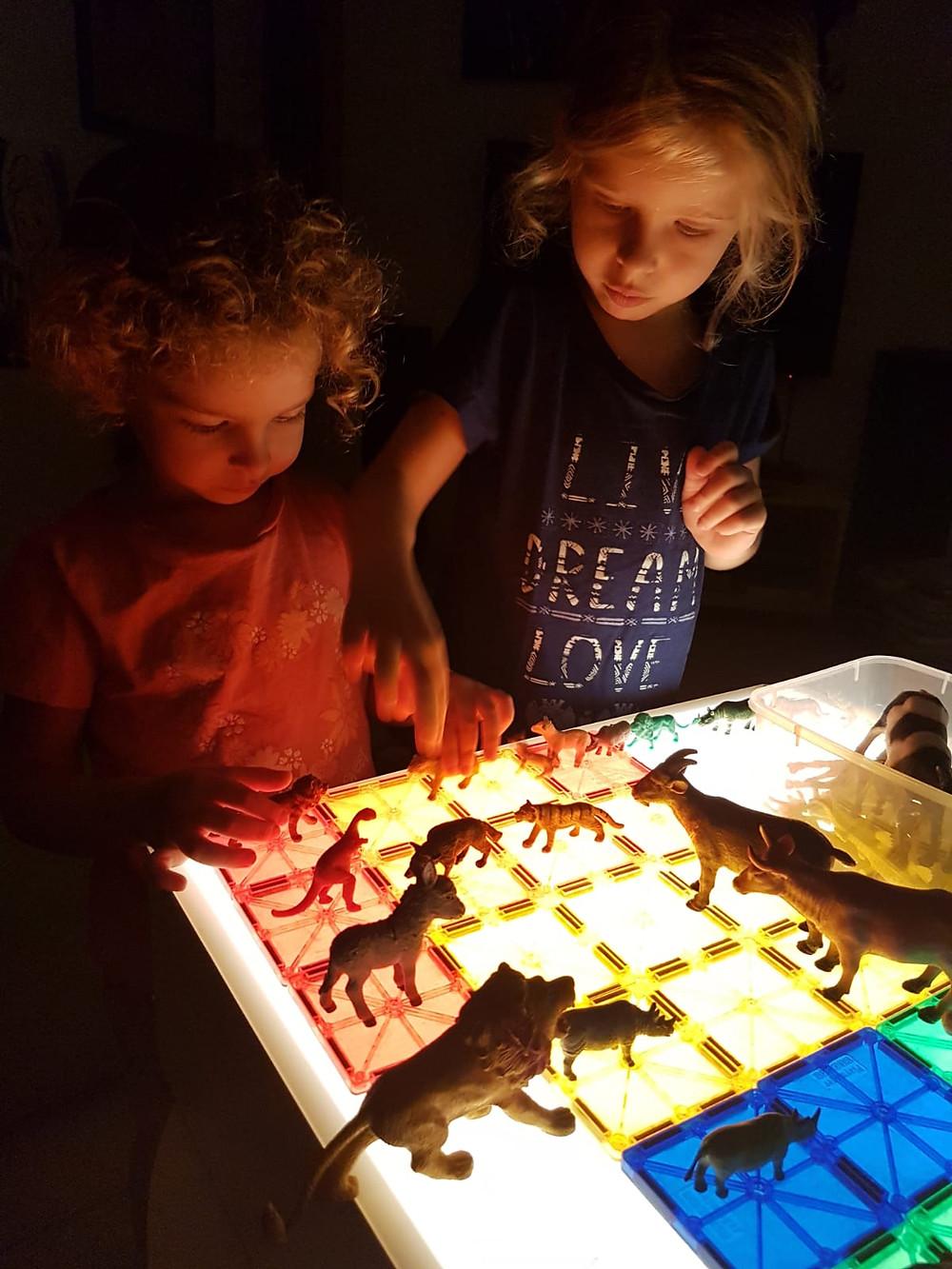אור וגל משחקות עם מגנטים וחיות בשולחן אור