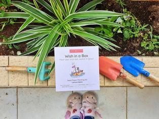 Wish in a Box - יום איכות הסביבה העולמי