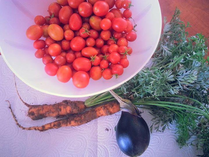 יבול מהגינה הקהילתית