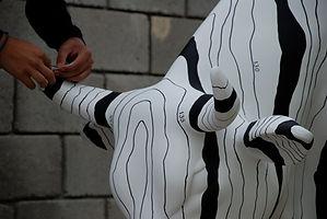vaca-zebra-1.jpg