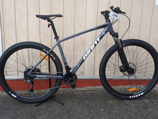 2020 Giant Talon 29, 2