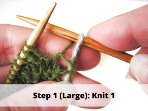 Step 1 (Large): Knit 1