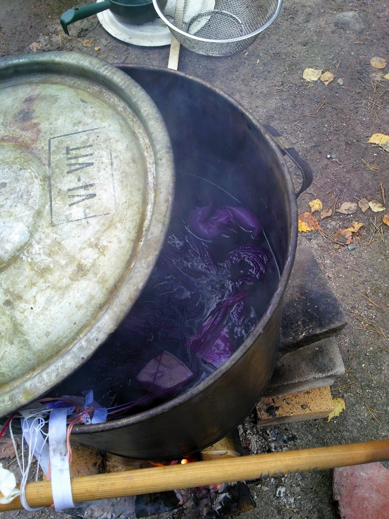 dyeing with logwood